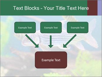 0000082523 PowerPoint Templates - Slide 70