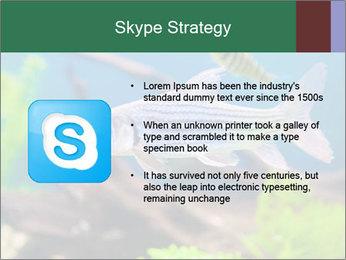 0000082523 PowerPoint Templates - Slide 8