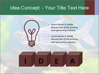 0000082523 PowerPoint Template - Slide 80