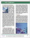 0000082523 Word Template - Page 3