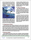 0000082523 Word Template - Page 4