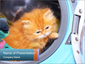 0000082527 PowerPoint Template - Slide 1