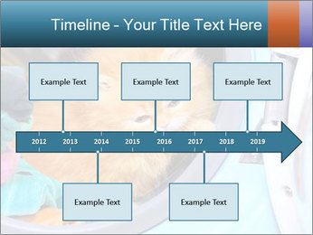 0000082527 PowerPoint Templates - Slide 28