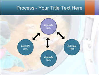 0000082527 PowerPoint Template - Slide 91