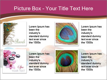 0000082546 PowerPoint Template - Slide 14