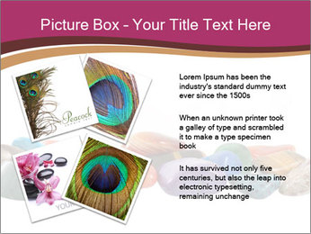 0000082546 PowerPoint Templates - Slide 23