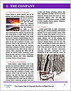 0000082547 Word Template - Page 3