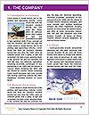 0000082553 Word Template - Page 3