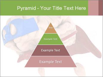 0000082563 PowerPoint Template - Slide 30