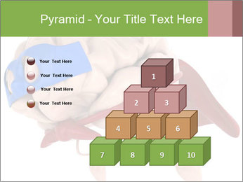0000082563 PowerPoint Template - Slide 31