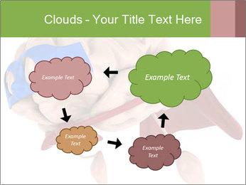 0000082563 PowerPoint Template - Slide 72