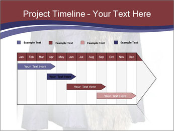 0000082564 PowerPoint Template - Slide 25