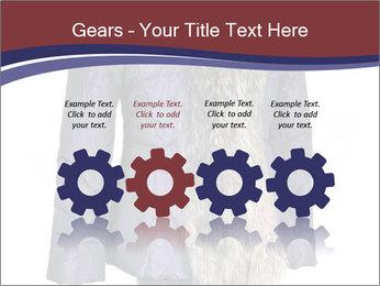 0000082564 PowerPoint Templates - Slide 48