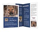 0000082582 Brochure Templates