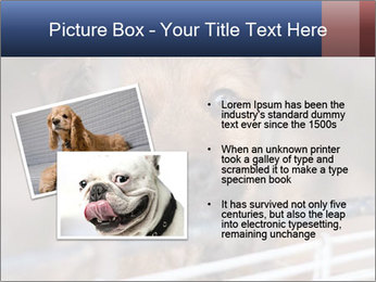 0000082582 PowerPoint Templates - Slide 20