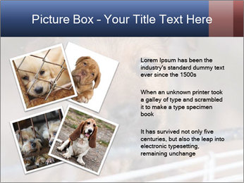 0000082582 PowerPoint Templates - Slide 23