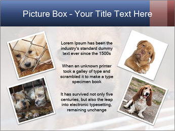 0000082582 PowerPoint Templates - Slide 24