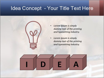 0000082582 PowerPoint Templates - Slide 80