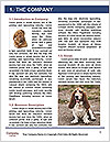 0000082582 Word Template - Page 3