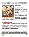 0000082582 Word Template - Page 4