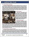 0000082582 Word Template - Page 8