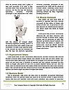 0000082583 Word Template - Page 4