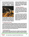 0000082584 Word Template - Page 4