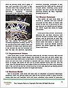 0000082585 Word Template - Page 4