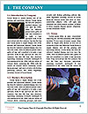 0000082588 Word Template - Page 3