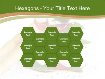0000082592 PowerPoint Template - Slide 44