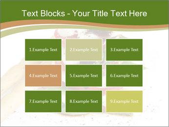 0000082592 PowerPoint Template - Slide 68
