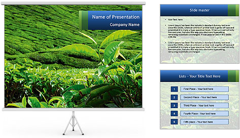 0000082598 PowerPoint Template