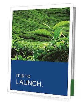 0000082598 Presentation Folder