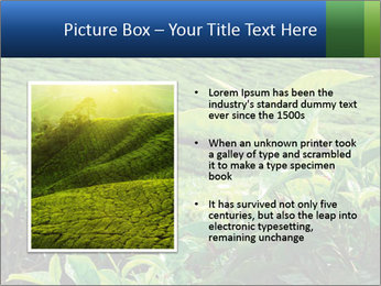 0000082598 PowerPoint Templates - Slide 13