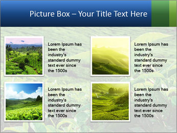 0000082598 PowerPoint Templates - Slide 14