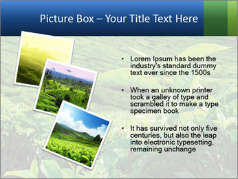 0000082598 PowerPoint Templates - Slide 17