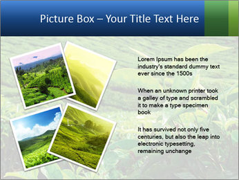 0000082598 PowerPoint Templates - Slide 23