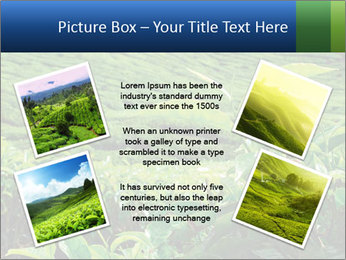 0000082598 PowerPoint Templates - Slide 24