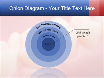 0000082603 PowerPoint Template - Slide 61