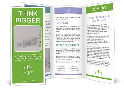 0000082606 Brochure Template