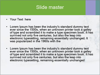 0000082606 PowerPoint Template - Slide 2