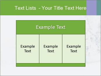 0000082606 PowerPoint Template - Slide 59