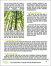 0000082607 Word Templates - Page 4