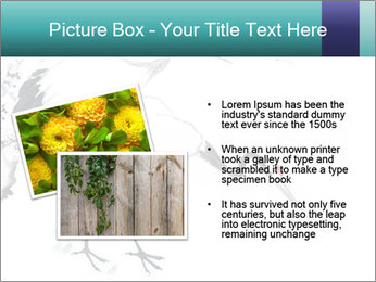 0000082613 PowerPoint Templates - Slide 20