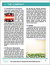0000082613 Word Template - Page 3