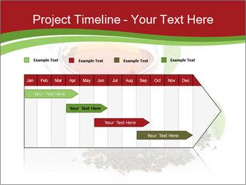 0000082616 PowerPoint Template - Slide 25