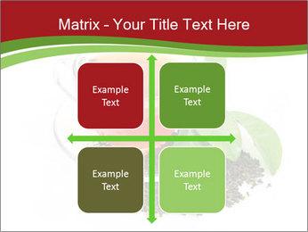 0000082616 PowerPoint Template - Slide 37