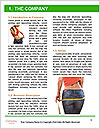 0000082627 Word Template - Page 3