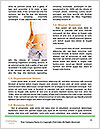 0000082627 Word Template - Page 4