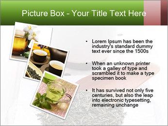 0000082634 PowerPoint Templates - Slide 17